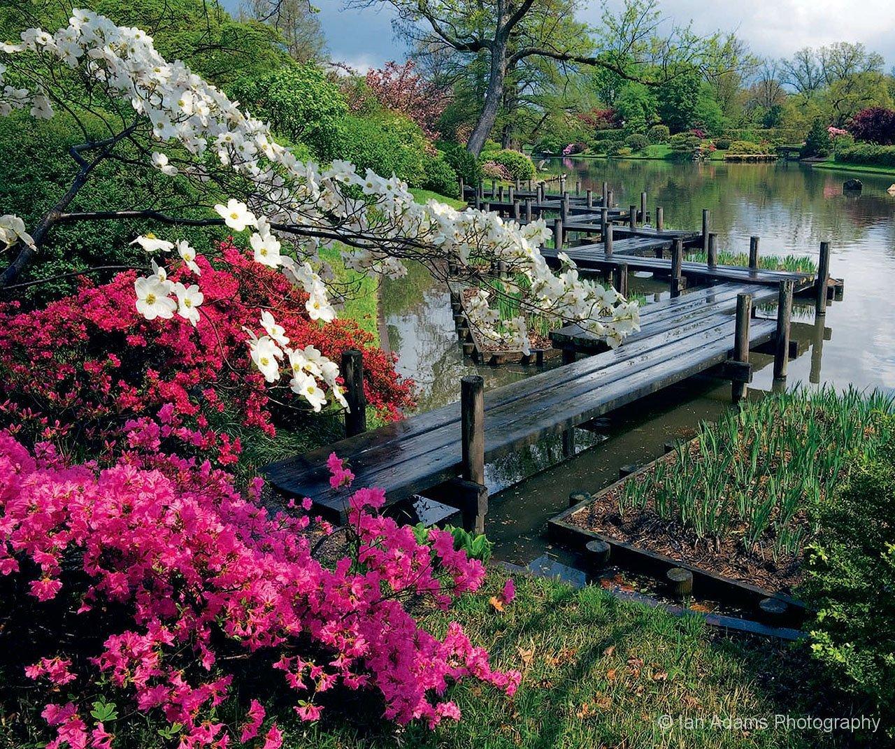 Gardens for Japanese botanical garden