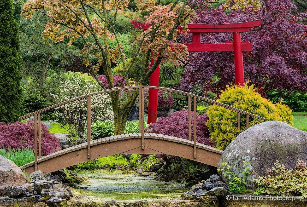 Asian garden parma oh