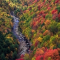 Blackwater River Gorge, Davis County, West Virginia
