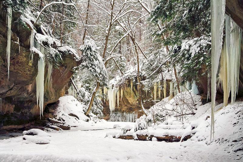 Stebbins Gulch, Holden Arboretum